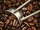 Café, uma das bebidas mais consumidas no mundo